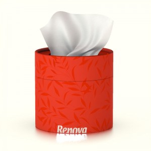 RENOVA-Tissue-box-rood-200057234