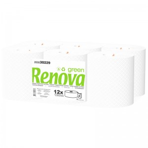 RENOVA GREEN Toiletrol jumbo 2laags 120mtr 12rollen 200030229